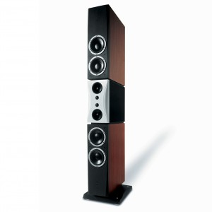 Loa Dynaudio Evidence Master (Rosewood Lacquer)