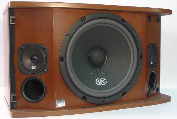 Loa karaoke Bik BS-880SV.2