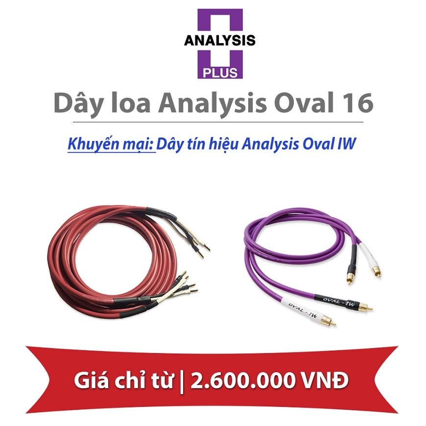 Day loa Analysis Oval 16